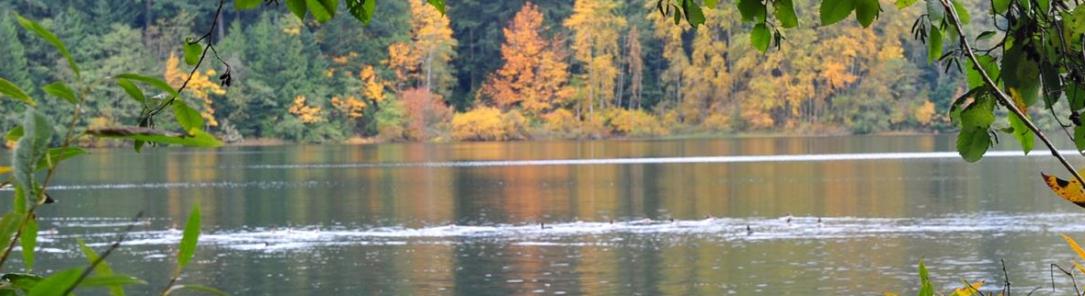 End of Year Picnic Lake Padden
